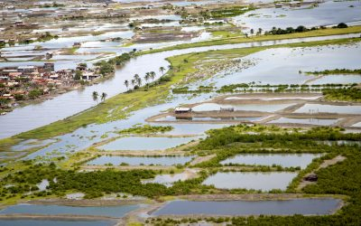 Integrating disaster and climate risk into the SDGs
